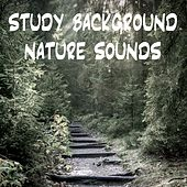 Study Background Nature Sounds by Nature Sounds (1)