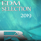 Edm Selection 2019 van Various