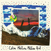 By Your Side (Mellow Mellow Acid Versions & Remixes) de Calm