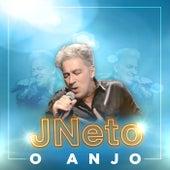 O Anjo de J. Neto