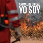 Yo Soy by Animal de Ciudad