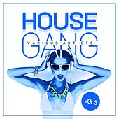 House Gang, Vol. 3 by Various Artists