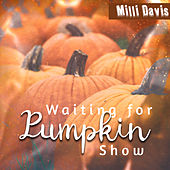 Waiting for Pumpkin Show by Milli Davis