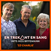 En Trekant En Sang 6 - Hits Hos Brygmann by Various Artists