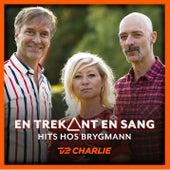 En Trekant En Sang 5 - Hits Hos Brygmann by Martin Brygmann