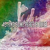 45 Find Some Peace & Quiet by S.P.A