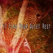 57 Find Your Quiet Rest de Water Sound Natural White Noise