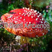 39 Storm Ambience by Rain Sounds and White Noise