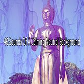 46 Sounds of a Calming Neutral Background von Massage Therapy Music