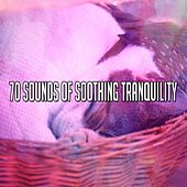 70 Sounds of Soothing Tranquility von Baby Sleep Sleep
