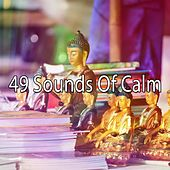 49 Sounds of Calm von Classical Study Music (1)