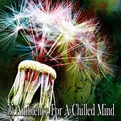 55 Ambience for a Chilled Mind von Music For Meditation