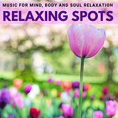 Relaxing Spots - Music for Mind, Body and Soul Relaxation di Various Artists