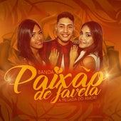 Virou Ex de Banda Paixão De Favela