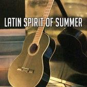 Latin Spirit of Summer by Guitar Instrumentals