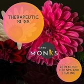 Therapeutic Bliss - 2019 Music for Spa and Healing di Various Artists