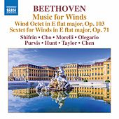 Beethoven: Music for Winds by Various Artists