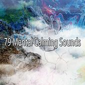 79 Mental Calming Sounds von Entspannungsmusik