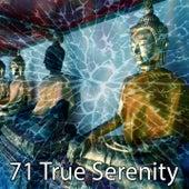 71 True Serenity de Musica Relajante