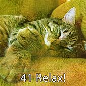 41 Relax! de Sounds Of Nature
