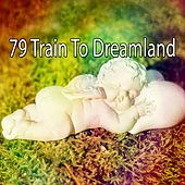 79 Train to Dreamland by Relaxing Spa Music