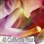 43 Cultivate Your Soul von Lullaby Land
