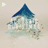 Acoustic Christmas van Various Artists