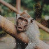 Funky Monkey von Ritchie
