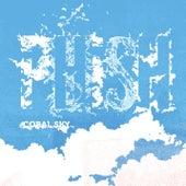Coral Sky de Phish