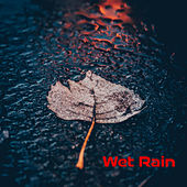 Wet_rain by Various Artists