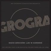 Radio Grochów - Luki w karierze von Grogra