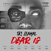 Dear IG by Taj Mahal