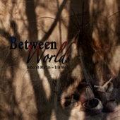 Between Worlds by Deborah Martin