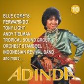 Indonesian Love Songs Adinda, Vol. 10 by Various Artists