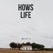 hows life (Freestyle) von Muzzy X