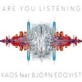 Are You Listening von KAOS