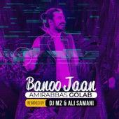 Banoo Jaan (Remix) by Amir Abbas Golab