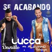 Se Acabando de Deejay Lucca & MC Danillo