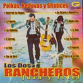 Polkas, Redovas y Shotices by Los Dos Rancheros
