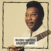 Muddy Water's Hits de Muddy Waters