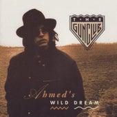 Ahmed's Wild Dream by The Gun Club