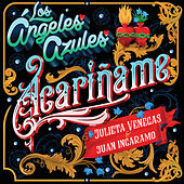Acaríñame by Los Angeles Azules