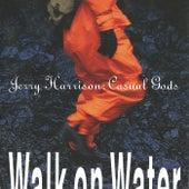 Walk On Water de Jerry Harrison