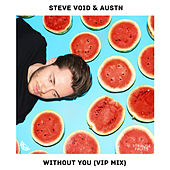 Without You (VIP Mix) von Steve Void
