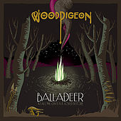 BALLADEER / to all the guys i've loved before by Woodpigeon
