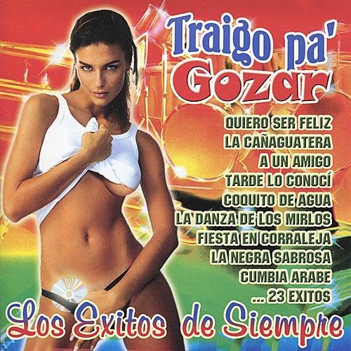 Traigo Pa' Gozar: Los Exitos de Siempre by Various Artists