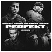 Perfekt (Remix) von AriBeatz