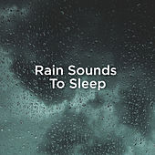 Rain Sounds To Sleep by Rain Sounds