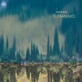 Tumanako von Chantal Acda