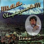 ¡¡¡Jallalla Chuquiagomarka!!! by Linno